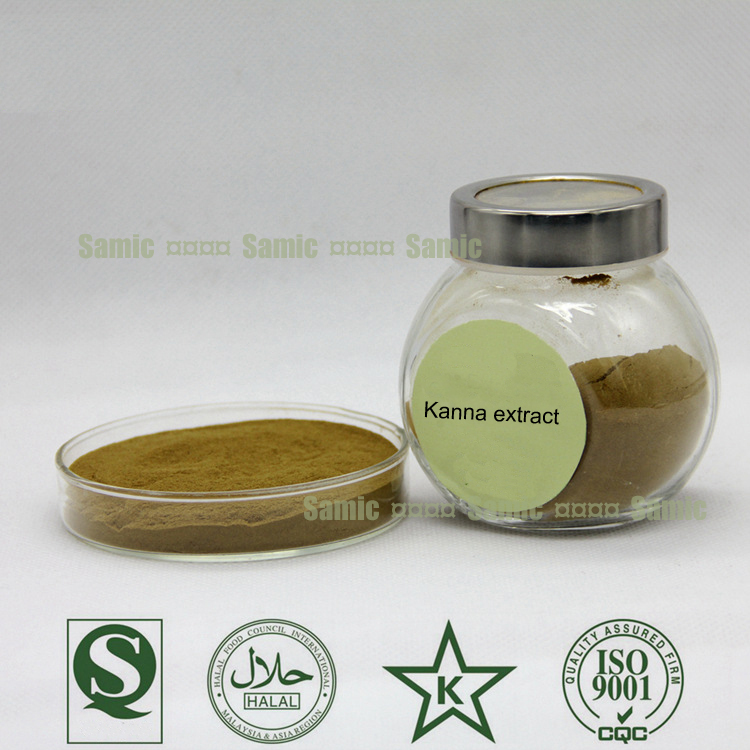 Pure Natural Kanna extract/Mesembrine 98%/Sceletium
