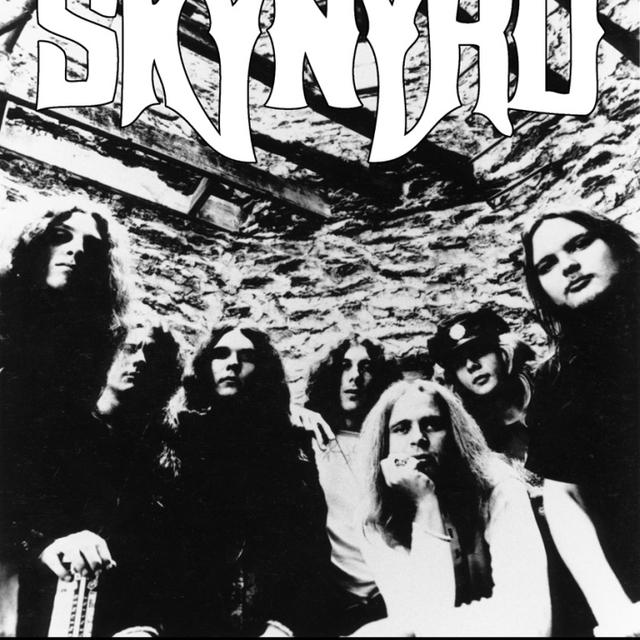 Lynyrd Skynyrd Group Poster Print (24 X 36)