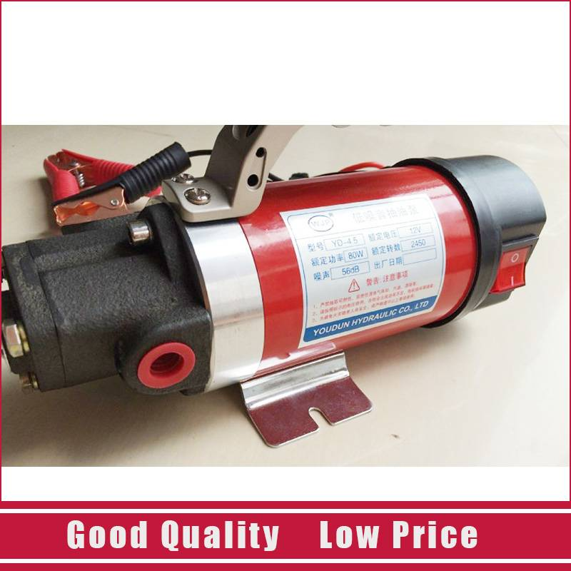 Cast Iron Micro Oil Transfer Pump 12V Electric 5L/min Gear Oil Pump