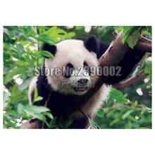 5D Diy Diamond Painting Young Giant Panda Cross Stitch Embroidery Wall Sticker Mosaic animals Crafts Rhinestone