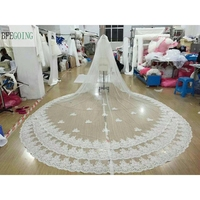 Ivory Tulle Appliques Lace Edge Wedding Bride Cathedral Veil 5 Meters