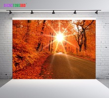 SHENGYONGBAO Art Cloth Photography Backdrops Props Autumn Scenery theme Photo Studio Background SML-0022 стоимость