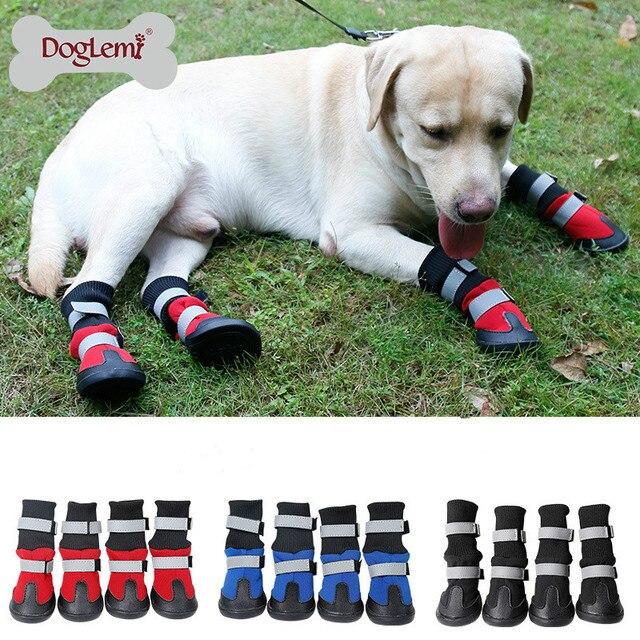 botas de perro