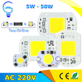 High Power COB LED Chip 5W 10W 20W 30W 50W 220V Input LED Lamp  Chip Smart IC For LED Floodlight Spotlight Warm /Cold White