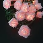 Romantic Rose Flower...
