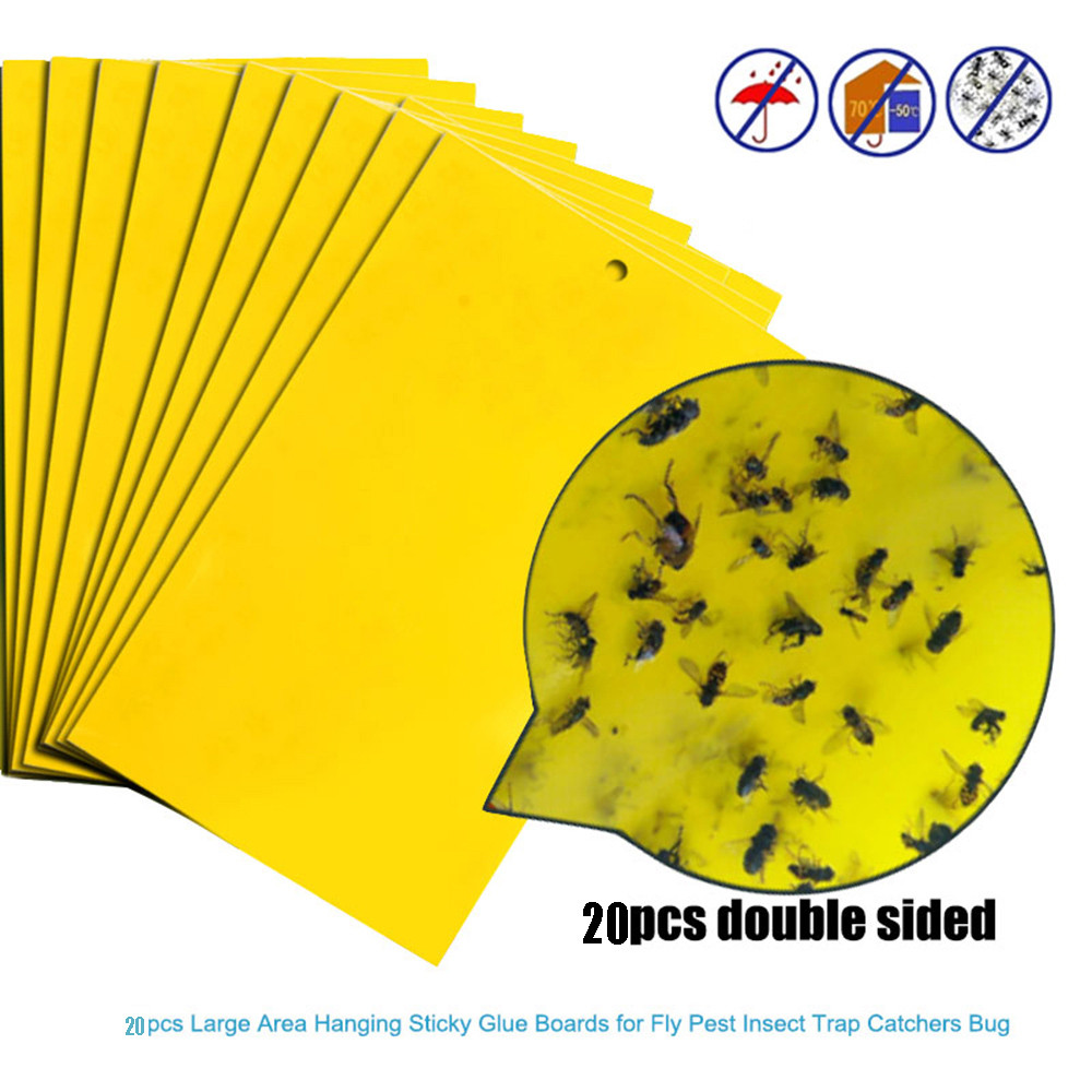 20pcs Strong Flies Traps Bugs Sticky Board Catching Aphid Insects Killer Pest Control Whitefly Thrip Leafminer Glue Sticker