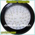 Оптовая продажа 3 Вт Led grow light 150 Вт с 50 шт. 3 Вт светодиодами для гидропоники освещения  Прямая поставка