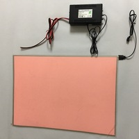 A3 size 297*420mm luminous film photot sheet panel super paper thin el lamp with dimmer DC12V inverter fade in out