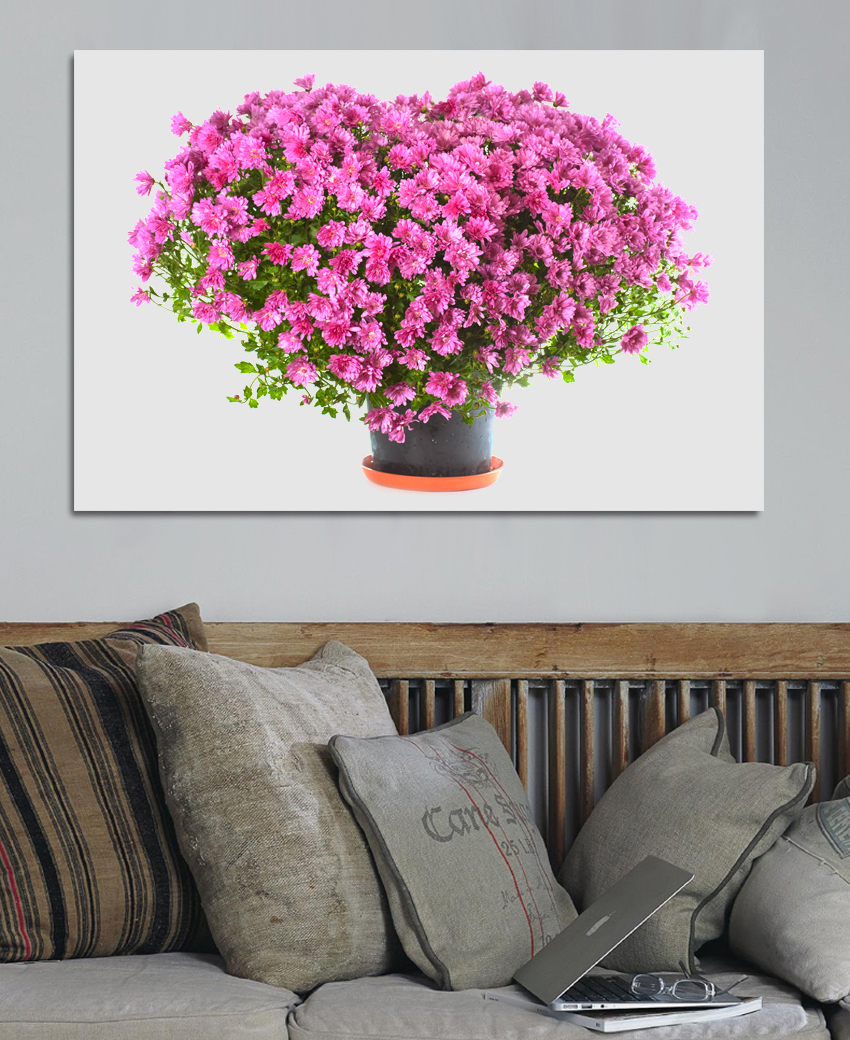 Online kopen Wholesale roze witte bloemen uit China roze witte ...