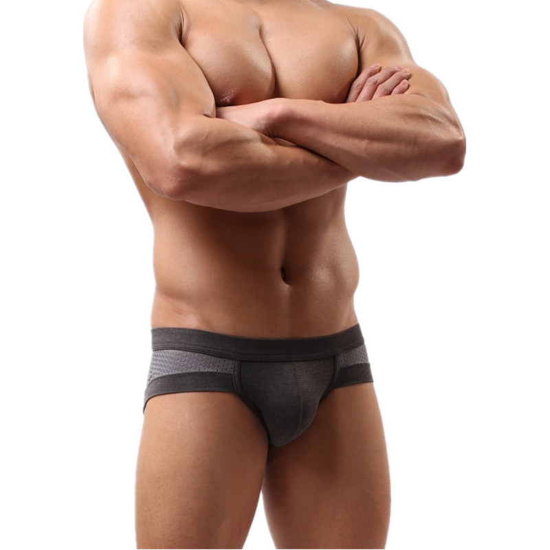 2019 Men Underwear Briefs  Mesh Mens Sexy Calzoncillos Slip Homme Shorts Panties Brief Man Panty Fashion Short Triangle Brand