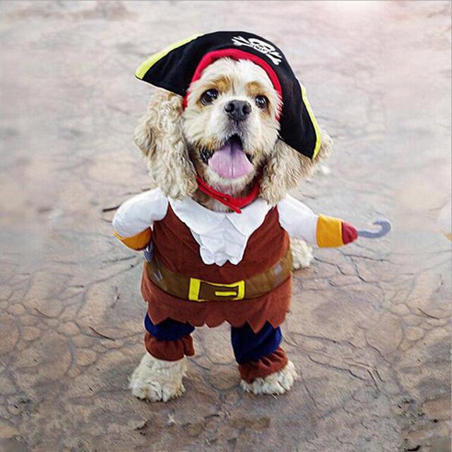 Pirate Dog Cat Cute Costume