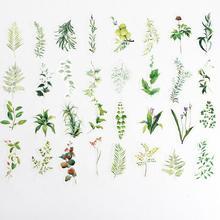 34 шт./лот винтажные травянистые растения зеленая трава Васи бумажные наклейки украшения наклейки для скрапбукинга DIY стикер Эсколар