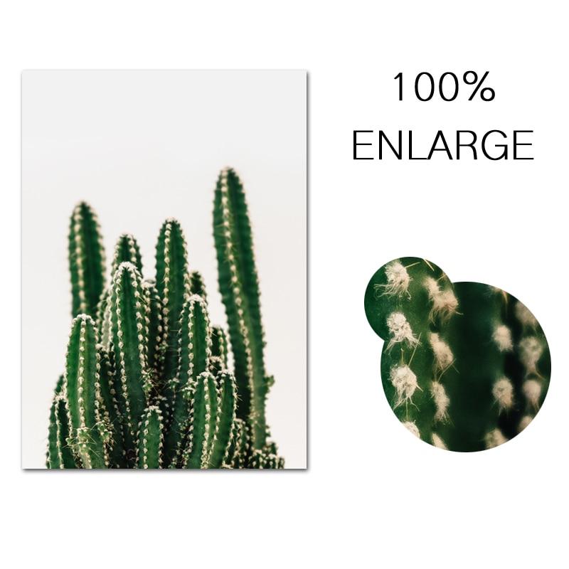 Cactus Nordic Canvas Wall Art  5
