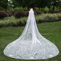 Appliques 3 Meters Wedding Bridal Veils Long With Comb Ivory White Elegant One Layer Appliques Flowers Veil Wedding Accessories