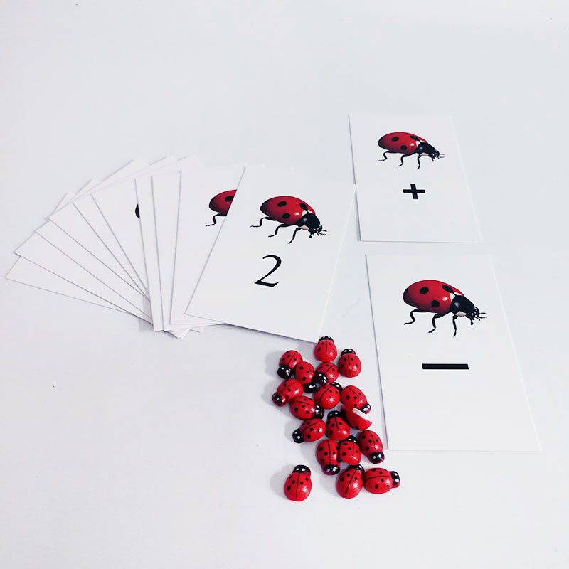 Montessori Math Material Montessori Ladybug Number Activity Cards Set Educational Learning Toys For Toddlers MJ1044H