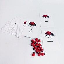 Монтессори математика Материал Монтессори Божья коровка активность количество карт комплект обучения игрушки для малышей MJ1044H