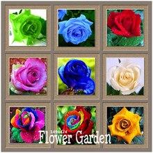 Big Sale!Flower pots planters ,20 Kinds,50 PCS/Lot, Rainbow rose seeds Beautiful rose seed Bonsai plants Seeds,#B4LT8H