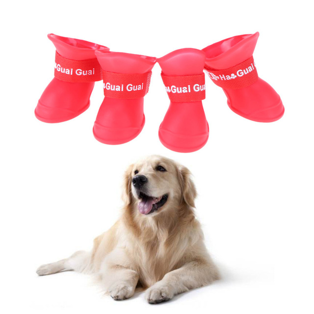 Rain Shoes  Booties for Dogs