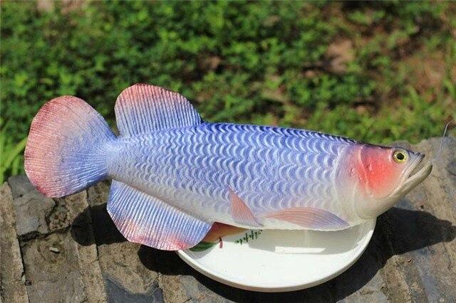 Arowana vis simulatie pu nep zeevruchten model baby kid voedsel