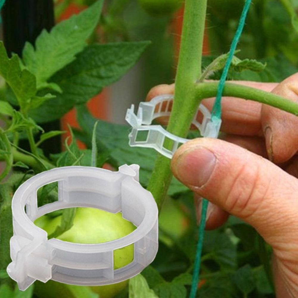 50Pcs Plastic Durable Vine Plants Vegetables Support Clip For Garden Greenhouse Types Plant Hanging Vine Holder Tool Ornament in Plant Cages Supports from Home Garden