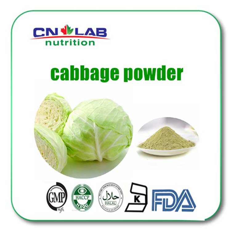 Pure Nature Cabbage extract powder 1kg/lot worldwide fast delivery tremella fuciformis extract polysaccharides 10 1 powder 100g lot