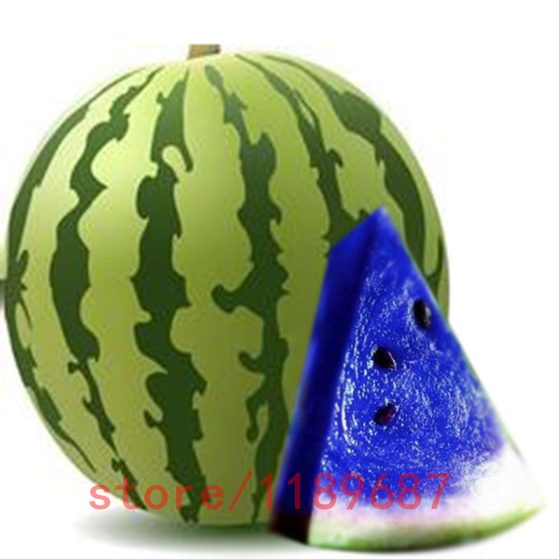 Popular Blue Watermelon Seeds-Buy Cheap Blue Watermelon ...