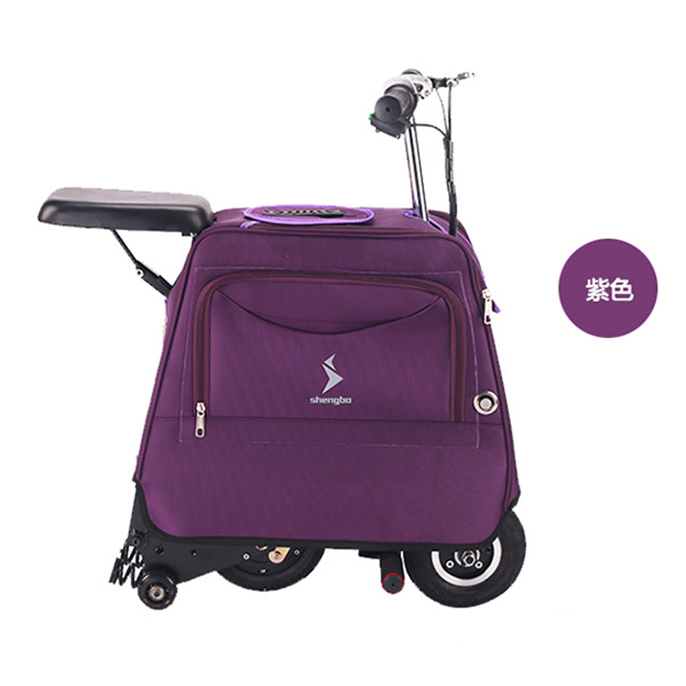 LUGGAGE SCOOTER (19)
