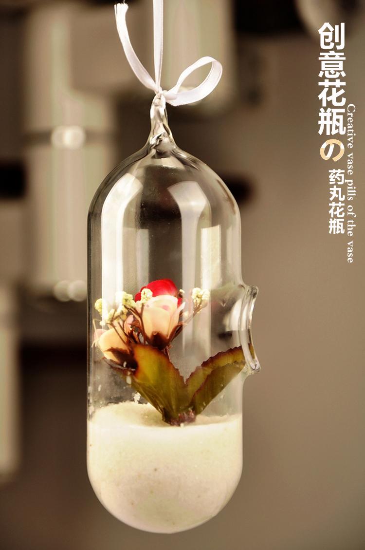 cpsula de la planta de aire terrario de cristal lindo ollas maceta cm