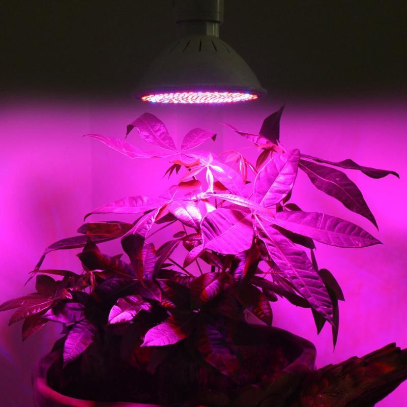 2pcs E27 Grow Led Plant light SMD LED Grow Light 24W Plant Lamp Bulb for Indoor Flowering Hydroponics Lighting