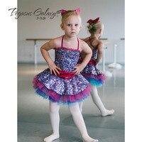 83c600c98 2018 Princess Ballet Dance Tutu Dress Girls Performance Dancing Dress Kids Tutu  Dance Dress Ballet Leotard