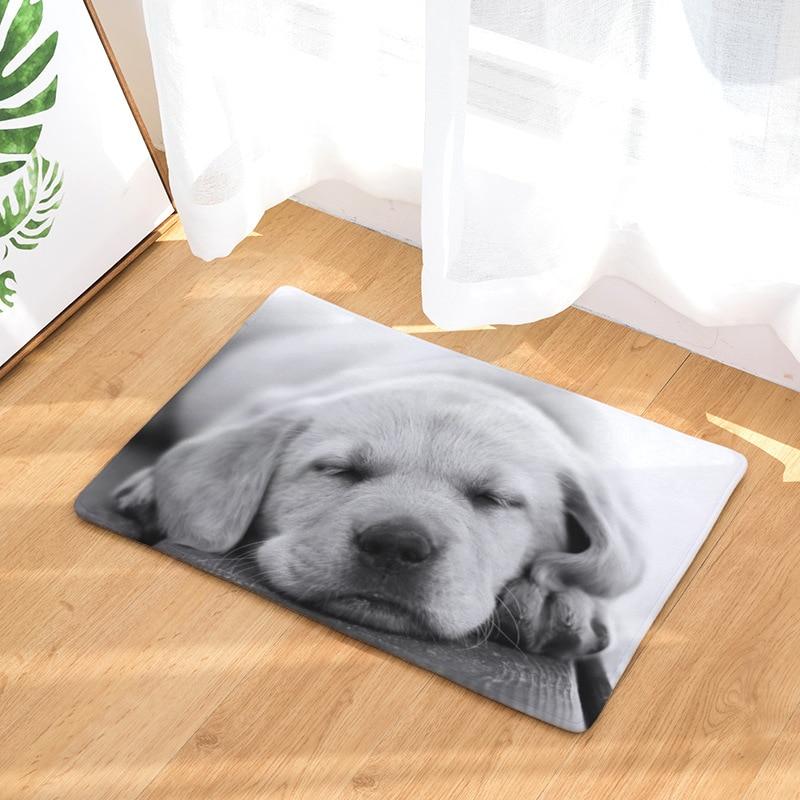 Cute Dog Pattern Home Door Mat Bathroom