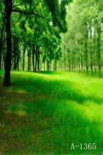 Frete grátis digital personalizado natureza photobackground verde estúdio cenários cênica, vinil backdrop casamento C482