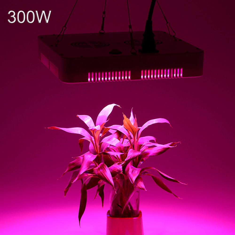 Phyto Lamp Full Spectrum LED Grow Light 300W Growing Lamp Indoor Hydroponic Greenhouse LED Plant All Stage Growth Lighting free shipping 50pcs lot european zinc alloy antique silver crimp end bead for bracelet making ec6