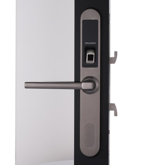 Waterproof Electronic Sliding Door Lock, Keyless Biometric Fingerprint Sliding Hook Door Lock for Wooden or Aluminum Glass Door