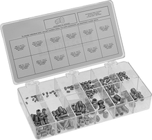 18-8 Stainless Steel Set Screw Assortment Inch Sizes, 200 Pieces