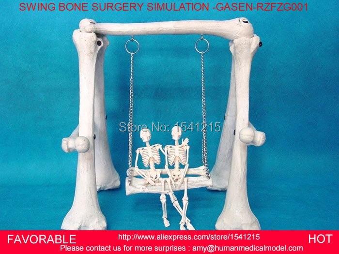 SURGERY MEDICAL PVC SWING COMBINATION OF HIGH QUALITY HUMAN SKELETON BONE GASEN RZFZG001