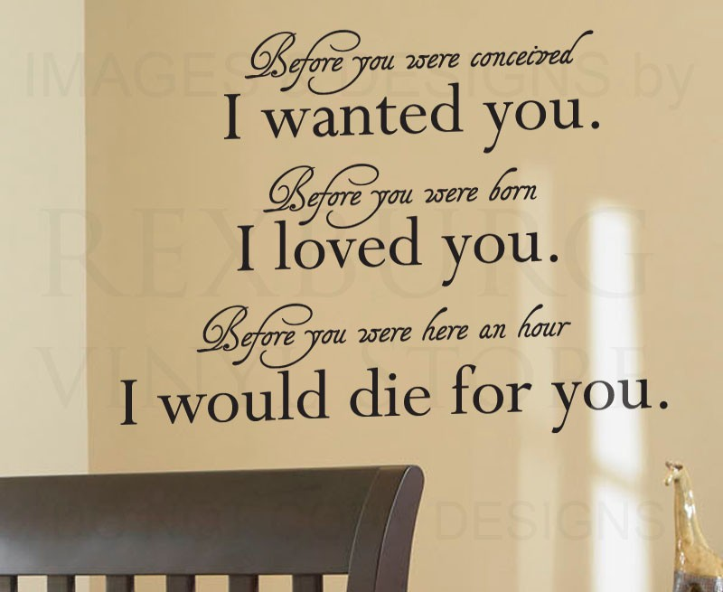 CaCar Home Wall Quote Decal Sticker Vinyl Art Baby Nursery Before ...
