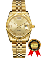 BRIGADA Swiss Watches Luxury Gold Mechanical Watches for Men, Nice Automatic Hollow Mechanical Men's Watch
