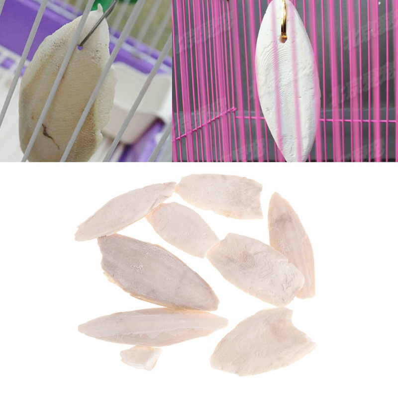 1 Bag Cuttlebone Cuttlefish Sepia Bone Cuttle Fish Bird Food Calcium Pickstone Pet For Bird Toy
