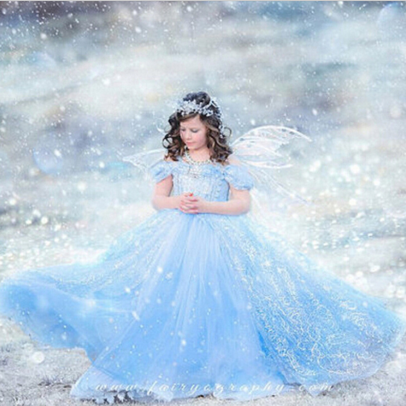 Fancy Cinderella Princess Dress Butterfly Snow White Cosplay Costume for Girls Elsa Crystal Flower Costume Free Shipping