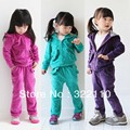 Girls Autumn Clothing set Kids suit Velvet Tracksuit 2 pieces Hoodies set with Ruffles Baby clothes Children Sport suits