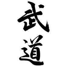 CS-1013#11*22cm Budo kanji funny car sticker vinyl decal silver/black for auto car stickers styling car decoration 5 2 17 8cm bushido kanji japanese character car stickers fashion car body decal car styling black silver c9 0672