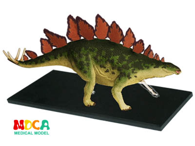 Stegosaurus 4d master puzzle Assembling toy Animal Biology Dinosaur organ anatomical model medical teaching model 4d master cat puzzle assembling toy animal biology organ anatomical model medical teaching skull skeleton model science toys