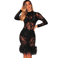Women Sexy Perspective Dress Feather Long Sleeve Sequins Lace Bodycon Club Party Party Dress Sexy Velvet Back Weeding Ladies