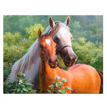 WONZOM Horse Couple DIY Painting By Numbers Animal & Calligraphy Unique Gift For Living Room Home Decor 16x20 inch