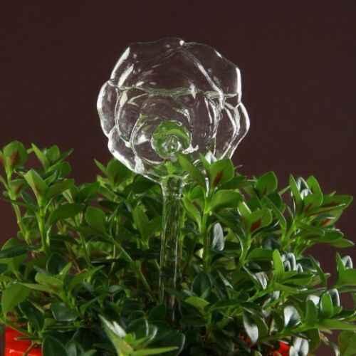 แก้วดอกไม้พืชน้ำรดน้ำ Bird Design Plant Waterer 6 ประเภท