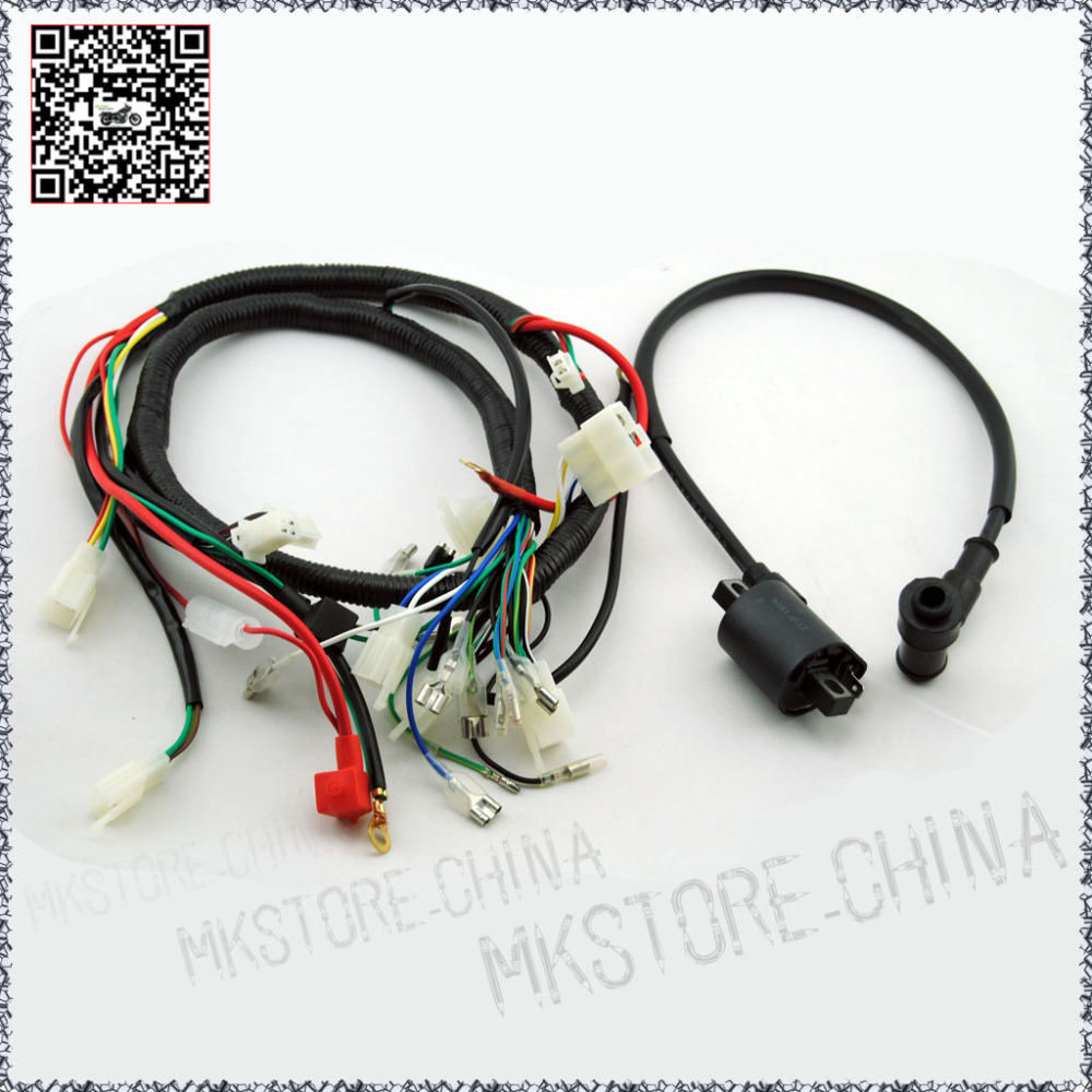 250CC+COIL WITH LEAD QUAD WIRING HARNESS for 200 250cc Chinese Electric  start Loncin zongshen