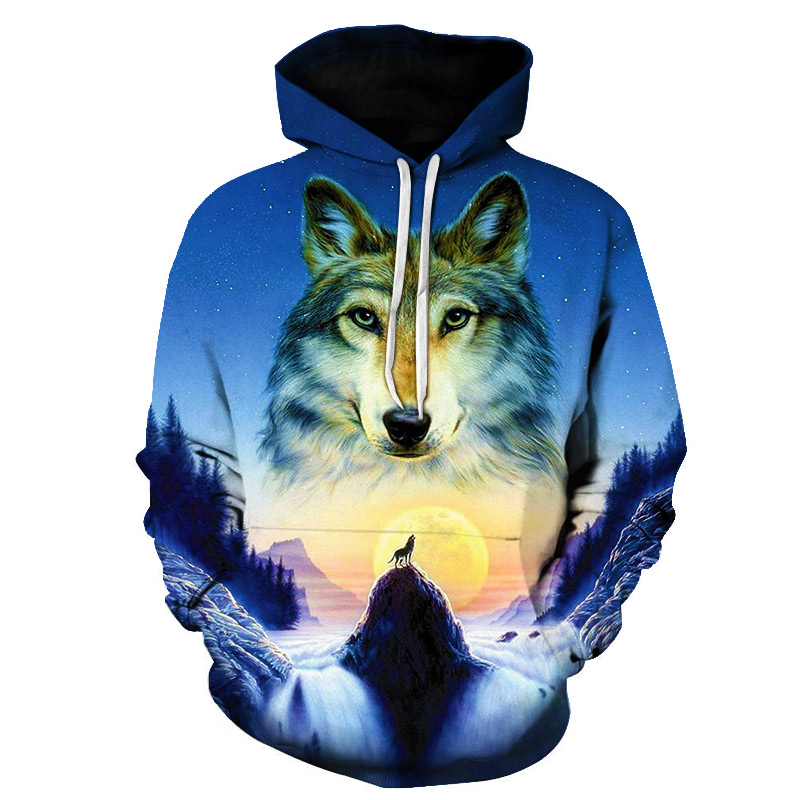 Loose sports hoodies for men and women in blue and pink with 3D print for spring/autumn 2019 casual fashion compression hoodies(China)