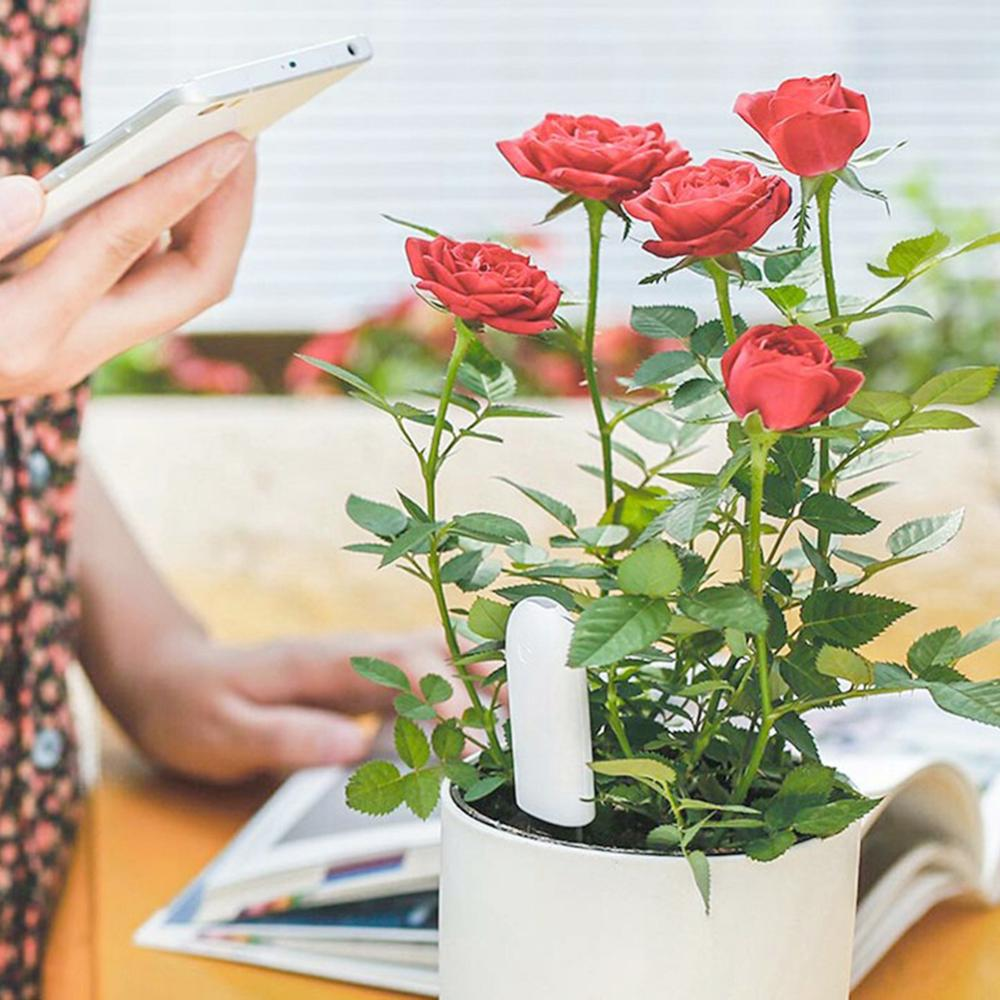Xiao mi mi fleur moniteur numérique plantes herbe flore soin sol Hu mi dité lumière de l'eau nutriment Temp détecteur intelligent testeur capteur - 2