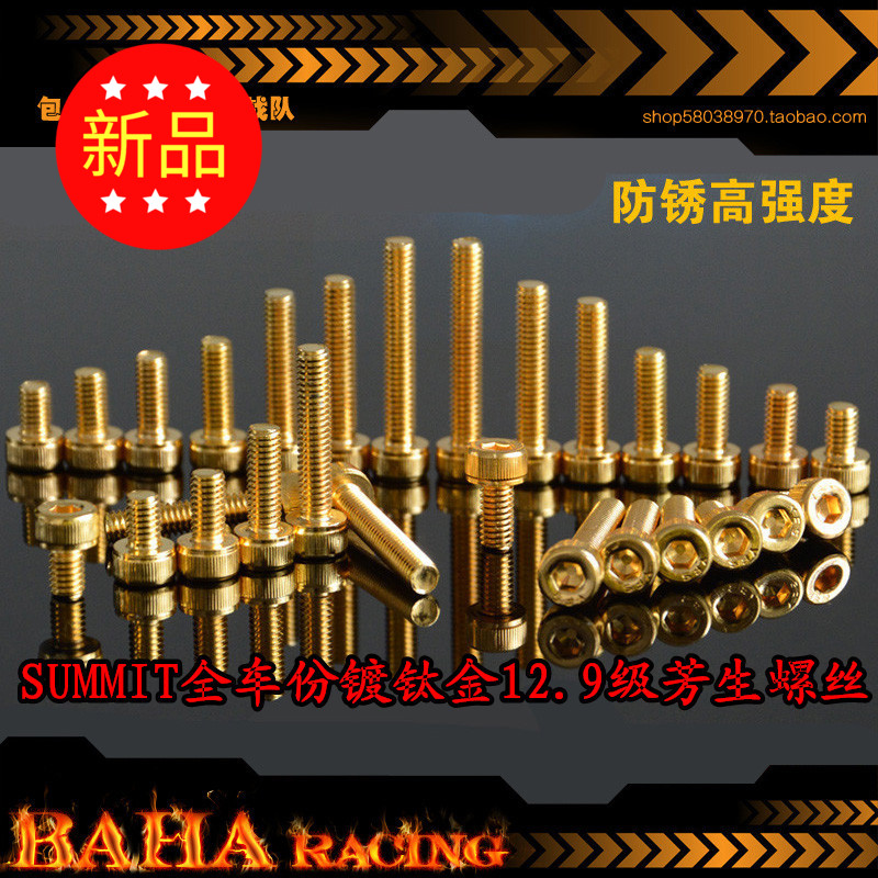 1/10 SUMMIT E - TRAXXAS REVO big S E all CheFen plating titanium 12.9 rust gold plated screws